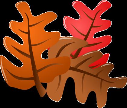 foliage-152051_640-1